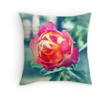 Vintage Rose Ektachrome photograph Throw Pillow