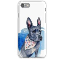 Blue Pit Bull Dog Watercolor Painting iPhone Case/Skin