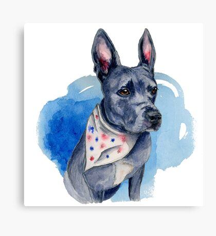 Blue Pit Bull Dog Watercolor Painting Canvas Print