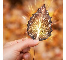 Hand holding leaf with tree inside nature fractals concept art photo print Photographic Print