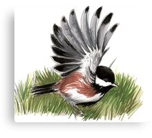 Flying Chickadee Canvas Print