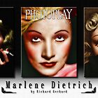 The Marlene Dietrich Collection by Richard  Gerhard