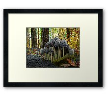 Stick Close ~ Shaggy Mane Mushroom ~ Framed Print