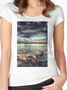 driftwood Women's Fitted Scoop T-Shirt