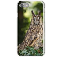 Long Eared Owl with Friend iPhone Case/Skin