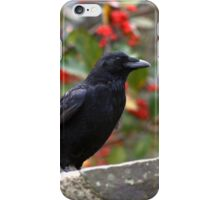 Smiling Crow iPhone Case/Skin