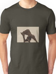 The Weeping Werewolf Unisex T-Shirt