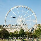 Grande Roue - Tuilerie by agu-photos