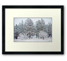 Winter frozen forest white landscape Framed Print