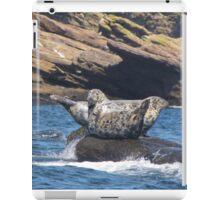 Grey Seals  iPad Case/Skin