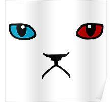 grumpy cat meme internet Poster