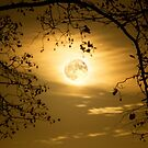 Supermoon UK by Harry Purves
