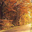Beautiful Autumn by ienemien