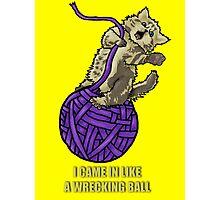 Wrecking Ball Kitty Photographic Print