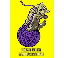 Wrecking Ball Kitty Photographic Print
