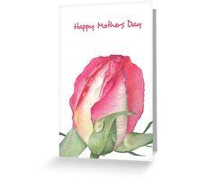 Pink Rose - Morning Dew - Greeting Card 3 Greeting Card