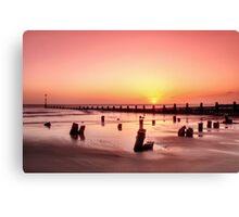 Beach Stumps Canvas Print