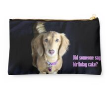 Did someone say birthday cake? Studio Pouch