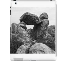 Rock formations in Big Bend National Park, Texas iPad Case/Skin