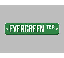 Evergreen Terrace Street Sign (Simpsons) Photographic Print