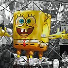Spongy by 1observer