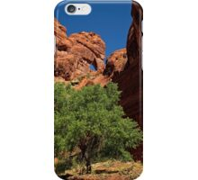 The Tree and the Window iPhone Case/Skin