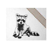Raccoon - Critter Love Collection 6 of 6 Gallery Board