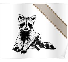 Raccoon - Critter Love Collection 6 of 6 Poster