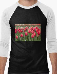 Tulips fields  Men's Baseball ¾ T-Shirt