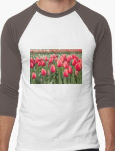 Tulips fields  Men's Baseball ¾ T-Shirt
