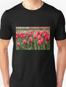 Tulips fields  Unisex T-Shirt