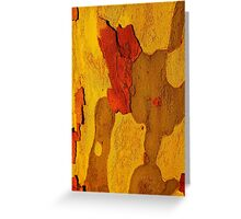 Tree Bark Series Abstract #1 Greeting Card