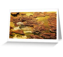 Tree Bark Series Abstract #2 Greeting Card