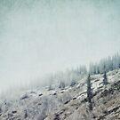 November Fog by Priska Wettstein