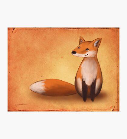 Smiling Fox Photographic Print