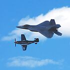 Reno Air Races 2014 - F-22 Raptor and P-51 Mustang by rrushton