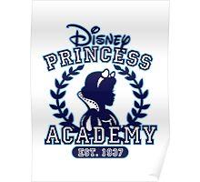 Disney Princess Academy Poster