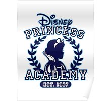 Disney Princess Academy Poster