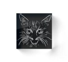 abstract cat Acrylic Block