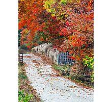 Autumn Country Lane Photographic Print