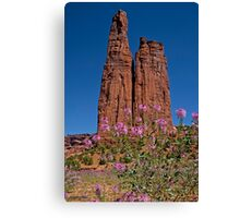 Spider Flowers and Spider Rock Canvas Print
