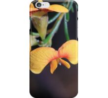 Smooth Parrot-pea (Dilwynia glaberrima) iPhone Case/Skin