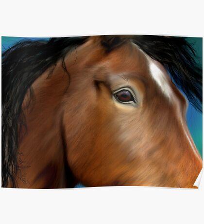Horse Portrait Close Up Poster
