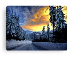 I Have The Blues Canvas Print