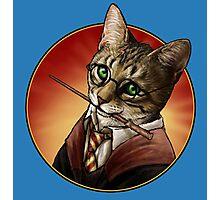 Harry cat Photographic Print