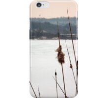 Winter Bullrushes iPhone Case/Skin