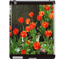 Red Tulips by the Tree iPad Case/Skin