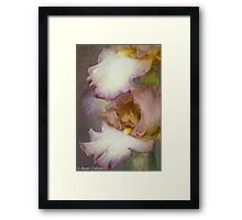 Iris World Framed Print