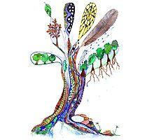 Tree of Life 6 Photographic Print