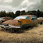 Abandoned 1960 Imperial by mal-photography